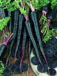 Black Nebula Carrot Seeds Heirloom Variety Daucus Carota ssp Sativus Vegetables Organic for Home Garden Fruit And Veg, Fruits And Vegetables, Carrot Varieties, Purple Fruit, Gothic Garden, Carrot Seeds, Black Garden, Black Flowers, Cut Flowers