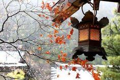 8057692-japanese-monastery.jpg (400×267)