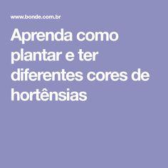 Aprenda como plantar e ter diferentes cores de hortênsias