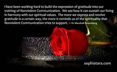I have been working hard to build the expression of gratitude into our training of Nonviolent Communication. We see how it can sustain our living in harmony with our spiritual values. The more we express and receive gratitude in a certain way, the more it reminds us of the spirituality that Nonviolent Communication tries to support. ~ Dr Marshall Rosenberg