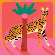 Harmony by Kika illu | #Botanical #Animals #Leopards #WildAnimals #Palms #Motivational #Multicoloured #Pink #JUNIQE | See more designs at www.juniqe.co.uk Kids Bed Linen, Printable Gift Cards, Last Minute Gifts, Affordable Art, Book Gifts, Kid Beds, Childrens Books, Coloring Books, Giraffe