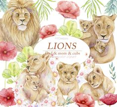 Watercolor Lion, Watercolor Books, Family Clipart, Lion Family, Safari Animals, Mother And Baby, Big Cats, Printable Art, Poppies