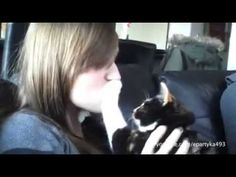 Animali allergici ai baci!