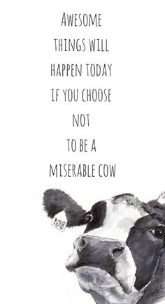 Looking for for inspiration for wallpaper?Check this out for perfect background ideas. These unique background images will brighten your day. Hd Quotes, Funny Quotes, Life Quotes, Inspirational Quotes, Farm Quotes, Country Quotes, Song Quotes, Daily Quotes, Qoutes