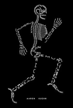 Skeleton Typogram   2 dimen­sional sta­tic rep­re­sen­ta­tion of long-stride loco­mo­tion. The com­po­nent bones, ordi­nar­ily con­structed with rigid min­er­al­ized tis­sues, have been entirely typo-grammatically replaced with 676 free and fused glyphs, together form­ing a com­plete skele­tal dia­gram in Latin. A rad­i­cally lit­eral graphic abstrac­tion of anatomy: