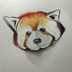 :) #chile #chiletatuajes #inktober  #ilustration #illustration #wop #wip #tattoo_artwork #acuarela #watercolor #leon #aov #inktober2016 #pandarojo #panda #redpanda