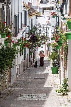I Estepona er selv blomsterpottene gjennomtenkt: En farge i hver gate. Det er fordi ordføreren vil at hele byen skal se ut som en hage. Sidewalk, Travel, Wallpapers, Viajes, Side Walkway, Walkway, Destinations, Traveling, Trips