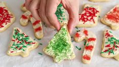 Soft Cut Out Sugar Cookies (gluten free!) | Ambitious Kitchen
