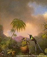 Thorntails, Brazil by Martin Johnson Heade American Realism, American Artists, Hunter Museum, Martin Johnson Heade, Hudson River School, Garden Of Earthly Delights, Exotic Birds, Natural History, Online Art