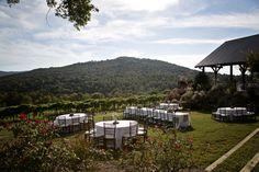 Vineyard Wedding Reception with Mountain View
