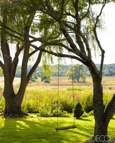 View of the pastures at Michael Trapp's Connecticut home.