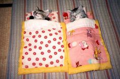 I don't know why kittens need sleeping bags...but I approve.  They're adorable!