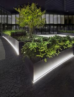 The Kö-Bogen atriums in Düsseldorf are lit linearly to good effect – with LED solutions by ADO Lights powered by TTC Timmler. Driveway Lighting, Facade Lighting, Plant Lighting, Linear Lighting, Exterior Lighting, Modern Outdoor Wall Lighting, Outdoor Lighting Landscape, Landscape Lighting Design, Outdoor Landscaping