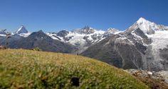 """Matterhorn (4478 m, Švýcarsko)  Přinášíme vám tipy na vrcholy, pro jejichž zdolání nepotřebujete zkušenosti horolezce, ale """"jenom"""" odvahu a vytrvalost. Více k tématu včetně reportáže z výstupu na zrádný Mont Blanc najdete v IN magazínu Hospodářských novin, který vychází tuto středu Monet, Mount Everest, Mountains, Nature, Travel, Mont Blanc, Naturaleza, Viajes, Destinations"""