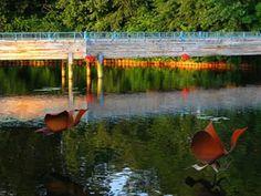 Brighton's Mill Pond