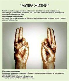 http://hlebopechka.ru/gallery/albums/userpics/120535/___________~1.jpg