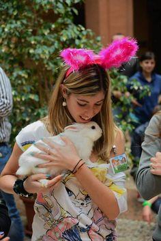Conigliando 2013 www.aaeconigli.it