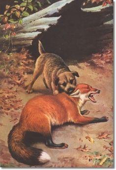border terrier painting - Google zoeken