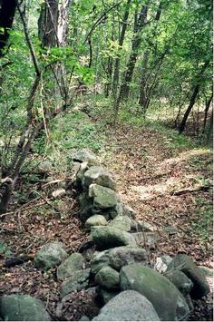 The Geology of Colonial New England Stone Walls
