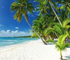Punta Cana #travel