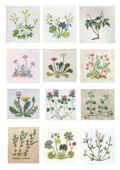 Gallery.ru / Фото #3 - Указатель растений и дизайнов - Mosca