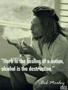 Bob Marley quote on smoking marijuana drinking alcohol. Ain't that the truth! Ganja, Weed Quotes, Stoner Quotes, 420 Quotes, Qoutes, Quotations, Stoner Humor, Eminem Quotes, Rapper Quotes