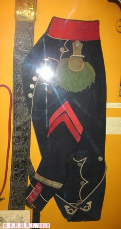 Sous officier 23e léger Military Clothing, Military Uniforms, Empire, Napoleonic Wars, Image Sharing, French, Illustration, Pictures, Fashion