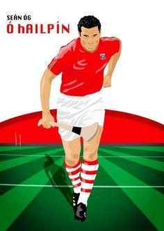 A nice peice of #artwork depicting Cork Rebel Week ambassador Seán Óg Ó hAilpín playing hurling. #Cork Rebel, Cork, Ireland, Irish, Legends, Bunny, Football, Game, Collection