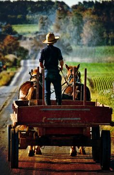 #Amish wagon