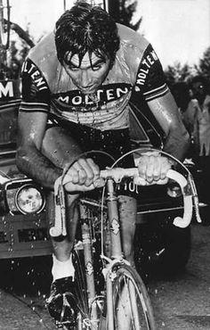 A soaked Eddie Merckx