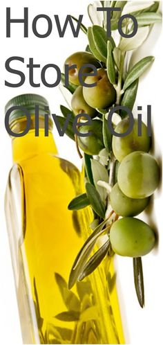 HOW TO: Store Olive Oil #howto #kitchen #oliveoil