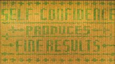 It's made with bananas! Amazing work as always. // Stefan Sagmeister -He did this using bananas! When they turned brown it was more legible.