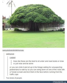 I love trees like this.... but the comments though
