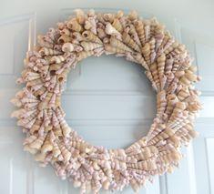 Turitella Galore Seashell Wreath | Free Shipping