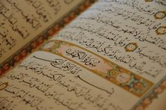 "Surah al-Kahf REMINDER!  Akhis & Ukhtis,    Whoever reads Surah-Kahf on the day of Jumu'ah, will have a light that will shine from him from one Friday to the next.""(Narrated by al-Haakim, 2/399; al-Bayhaqi, 3/249.  The Prophet (Peace be Upon Him) said: ""There is such an hour on Friday that if any Muslim makes Du'ain it, his Du'a will definitely be accepted. ""  (Bukhari)"