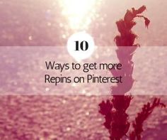 Succeeding on Pinterest takes more than just sharing photos everyday. Sharing content at specific times and in certain ways will lead to more engagement. Creating your pins with your user in mind helps drive engagement. Think about what mood they will be in, what they are looking for, and on what device and in what context they will be viewing your pin.