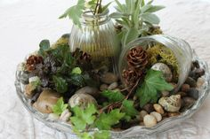 DIY tabletop garden from Goodwill finds & plants from the yard
