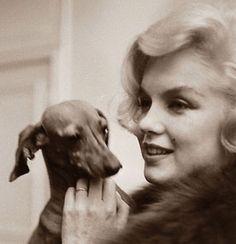 Guau! Marilyn Monroe con su mejor amigo!