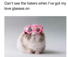 Guinea Pig with Love Glasses on...