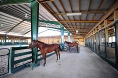 check out this barn/ indoor combo with mesh fronted stalls and the lower front that I like!