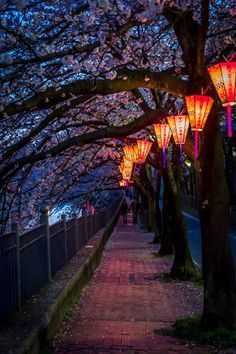 What about hanging lanterns from brackets along the outside of the building along the alley...