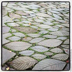 garten pflaster Leaf Paving Stones (Photo by Jennifer Learmonthplease keep the photo credit, even if you repost)