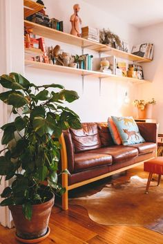 House Call: A Vintage and Modern Melbourne Apartment | Apartment Therapy