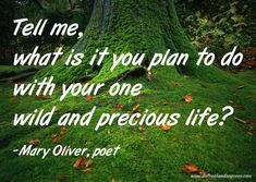 Mary-Oliver-quote-www.sofreshandsogreen.com
