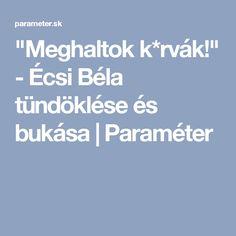 """""""Meghaltok k*rvák!"""" - Écsi Béla tündöklése és bukása   Paraméter"""