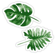 Monstera stickers featuring millions of original designs created by independent artists. Stickers Cool, Red Bubble Stickers, Tumblr Stickers, Phone Stickers, Journal Stickers, Printable Stickers, Planner Stickers, Aesthetic Stickers, Patches