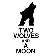 Two wolf and a moon - Perfect for T-Shirt Two Wolves, White Wolf, Logo Google, Beast, Tumblr, Decals, Google Search, Tattoos, Business