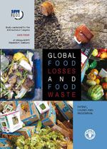 GLOBAL FOOD LOSSES   AND FOOD WASTE    EXTENT CAUSES AND PREVENTION    Study conducted for the   International Congress
