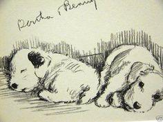 Lucy Dawson 1937 SEALYHAM TERRIER Dog Art Print Matted #Vintage