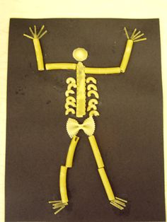 Teaching about the Skeletal System